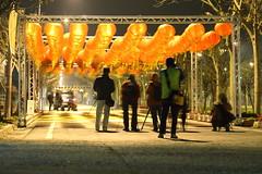 IMG_1395 (Delth歪) Tags: 2013 夜間 攝影比賽 農業博覽會
