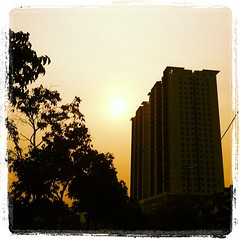 #morning #sunshine #silhouette (raymondtan85) Tags: square squareformat lordkelvin iphoneography instagramapp uploaded:by=instagram