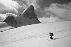 St. Nicholas Peak (Darren Umbsaar) Tags: park white mountain lake snow canada black ski ice saint clouds spring skiing peak glacier mount nicholas national alberta bow summit banff telemark wapta icefeld