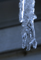 Icey Hand (Kreative Capture) Tags: winter cold water frozen hand fingers hanging icicles icey