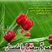 - 13014086143_e4cfc6a55b_s