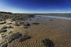 Scotland_014 (Mark B. Duncan) Tags: summer canon landscape eos scotland lowlands scottish panoramic newtonstewart