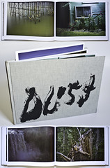 """DUST"" exists (Mount Eerie) Tags: dust philelverum mounteerie printedoutflickraccounts"