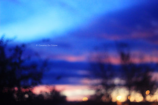 Colores de la mañana