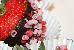 if it's brought to your desk you can eat it (Lori Greig) Tags: red food macro love closeup fruit dessert juicy strawberry sweet chocolate curls valentine seeds desserts health gift covered treat onwhite healthcare vitamins