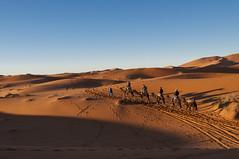 _DSC0348 (deborahmocci) Tags: africa people sahara village desert market south palm morocco arabian kasbah
