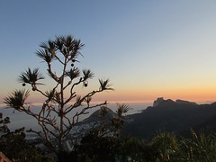Sunset.... (ana.jerlich) Tags: blue sunset sky orange sun tree rio bluesky corcovado cristo