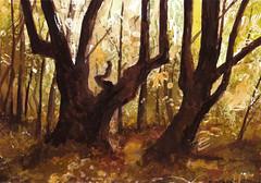Buki (Caro84) Tags: las water forest watercolor painting paint aquarelle poland polska polish polen watercolour acuarela polonia obraz aquarela pologne aquarell acquerello polsko akvarell  akvarel  akwarela