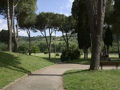 Pontassieve_e-m10_1005105619 (Torben*) Tags: park italien trees italy path baeume weg pontassieve rawtherapee olympusm17mmf18 olympusomdem10