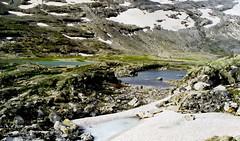 Route 258 (jjcordier) Tags: neige lande norvge sognogfjordane route258