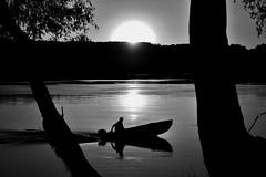 DSC_0316-01 (anabezic) Tags: water sun blackandwhite nature boat trees bnw monochrome danube dunav vojvodina serbia srbija plavna river
