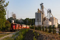 Summer Evenings on the GNRR (Kyle Yunker) Tags: railroad mill train georgia grain pride northeastern pilgrims emd gnrr gp20