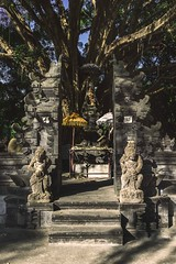 Entrance to Pura Tirtha Empul (Syahrel Azha Hashim) Tags: travel light shadow vacation bali holiday detail tree colors architecture 35mm indonesia temple prime colorful dof getaway sony details entrance statues naturallight nopeople offering handheld shallow simple touristattraction ubud placeofworship 2015 a7ii colorimage tampaksiring puratirthaempul sonya7 syahrel ilce7m2