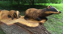 Badgers (klaroen) Tags: wood nederland badgers trunk amelisweerd boomstam houtsnijwerk dassen