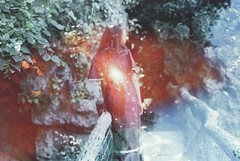 Secret Garden (Violette Nell) Tags: summer portrait france nature youth analog 35mm vintage garden landscape poetry doubleexposure jardin naturallight nostalgia ethereal dreamy melancholy secretgarden feelings filmphotography surimpression 35mmcolorfilm portraitargentique violettenell