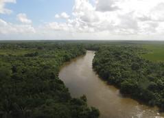 Belize River (zug55) Tags: river belize wetlands caribbean centralamerica belizeriver belice djungle americacentral britishhonduras