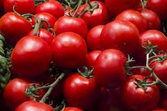 Tomatoes (johnjduncan) Tags: red food green cooking fruit tomato rouge rojo stem tomatoes vine vegetable fresh tomates bunch vermell rd pomodori tomate pomodoro ripe laal ingredient rode rote tomaat tomat tomquet tamaatar