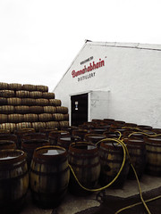 0018 (PalmerJZ) Tags: travel ireland castle scotland whisky scotch falconry