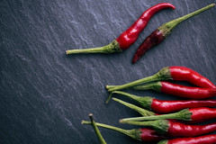 (donna leitch) Tags: red macro 100mm thai peppers chilipeppers chilies donnaleitch