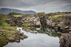 ingvellir National Park - Iceland (Christian ) Tags: sea lake bird nature water island see iceland wasser natur landschaft vogel felsen