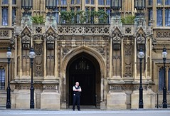 On Guard (pjpink) Tags: uk england london architecture spring britain may housesofparliament parliament government ornate neogothic palaceofwestminster 2016 pjpink