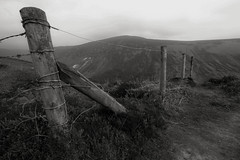 The End of the Line (Costigano) Tags: ireland fence glendalough wicklow fencefriday
