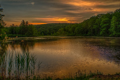 The-Colors-of-Morning (desouto) Tags: flowers sky nature water clouds stream stones lakes ponds hdr