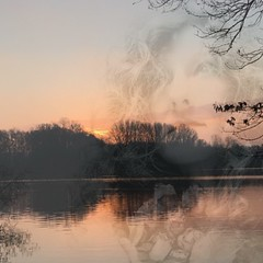 and sometimes I go to the water and paint pictures in my head... (mabumarion) Tags: winter lake water sunrise doubleexposure branches silhouettes lakeside iphone dewittsee