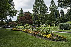 Torino  Parco del Valentino (Leandro.C) Tags: alberi torino nuvole cielo fiore parcodelvalentino leandroceruti