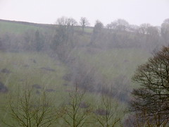 Around Calstock/9 (Joanpix) Tags: england rain cornwall tamarvalley calstock aonb torrents
