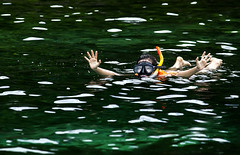 Diver (paza140) Tags: travel sea woman holiday nature water girl lady thailand island dive diver koh paza140