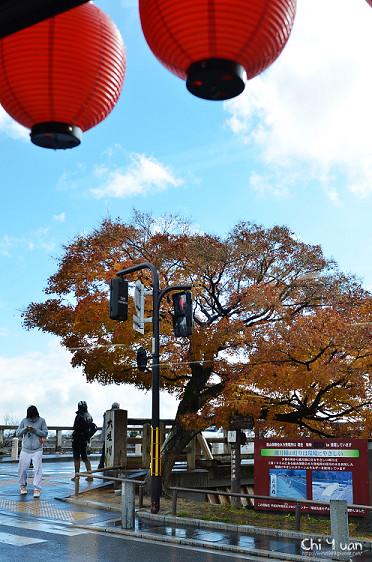 嵐山櫻餅20.jpg