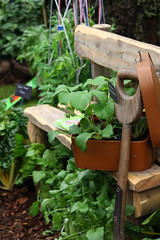 All Packed (Mabacam) Tags: plants london gardens bench fork suitcase chelseaflowershow 2013 gardenfeatures