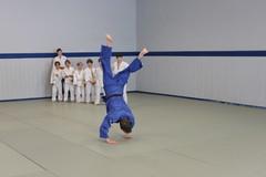 IMG_9887 (TSVE1890) Tags: judo bielefeld tsve