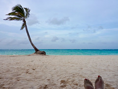 Here's what 6.30 PM looks like in Punta Cana... (Explored) (montreal_bunny) Tags: vacation beach me june sand dominicanrepublic palmtree puntacana explored 2013 swollenfeetfromtheflight
