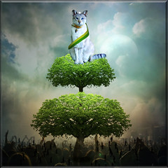 O pulo do gato (jaci XIII) Tags: tree cat surrealism humor gato rvore surrealismo