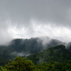 (mixingmotion) Tags: trees mountains nature fog contrast tennessee foggy dramatic rainy smokey steamy