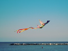 Kite (Linda Effe) Tags: blue sea sky italy kite beach water seaside sand rocks aquilone cesenatico