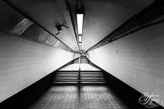 Long way home (Umbreen Hafeez) Tags: city bw white black water station train underground mono blackwhite tube steps bank rail tunnel