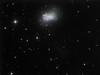 NGC 4449 Irregular Dwarf Galaxy in Canes Venatici (Not Ready for Primetime Stars) Tags: pine dwarf ngc galaxy canes lone 4449 venatici