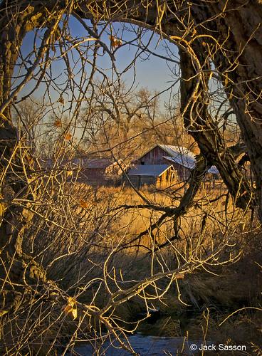Photo - Cottonwood barn