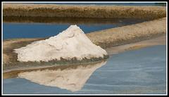 Carnet de voyage en Bretagne - (15/24) (Guenever45) Tags: mer bretagne sel marais morbihan gurande maraissalants presqule saill paludier et2013 aot2013