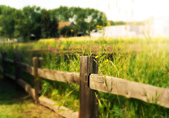 Late Summer Day (~DGH~) Tags: summer canada fence august alberta pentaxkx fortedmontonpark 2013 historicaledmonton historicalalberta smcpentaxdal1855mmf3556al fencefriday ~dgh~ picmonkey