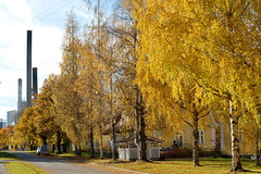 Varkaus syksy 2013 Tyven asunnot_2758w (Timo Heinonen) Tags: finland autumncolors ruska varkaudenkaupunki