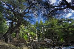 "the heavenly djurdjura (aziouezmazouz) Tags: lights amazing colours vivid breathtaking beautifulscenery bellissima naturesfinest awesomeshot vibrantcolours beautifulcapture stunningsupershot ""flickraward"" vividstriking"