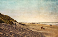 curving beach (silviaON) Tags: sea beach october g norderney ie textured 2013 soulscapes contemporaryartsociety memoriesbook magicunicornverybest magicunicornmasterpiece flypapertextures isabellafranceaction