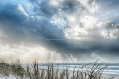 a_local_shower_at_the_beach ... (robvanderwaal) Tags: sea sky cloud seascape beach netherlands rain clouds strand landscape shower nederland wolken zee sunbeam regen maasvlakte sunbeams bui landschap wolk zonnestraal regenbui zonnestralen 2013 maasvlakte2 lucjt rvdwaal robvanderwaalphotographycom