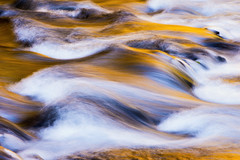 Alchemy (Michael Bollino) Tags: autumn abstract color reflection fall nature water creek gold washington intimate columbiarivergorge alchemy motions