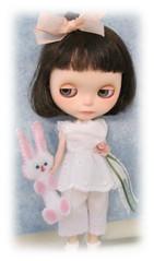My Bunny Rabbit