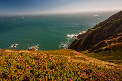 Point Reyes - California (Jackpicks) Tags: california cliffs coastal coastline pointreyes californiacoastline